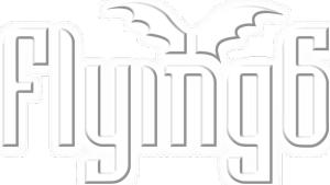 Flying 6